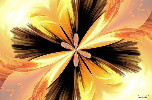 Maria Urso  - Feathers in the Sun