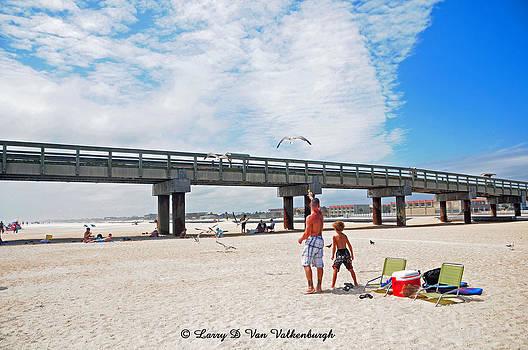 Feeding The Gulls on St Augustine Beach by Larry Van Valkenburgh