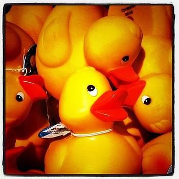 Feelin Just Ducky by Jaye Howard