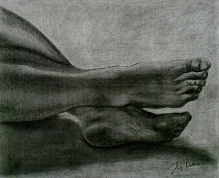 Feet by Terry DeMars