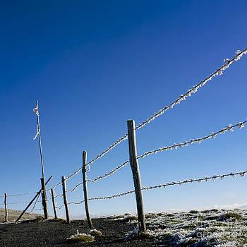 BERNARD JAUBERT - Fence covered in hoarfrost in winter