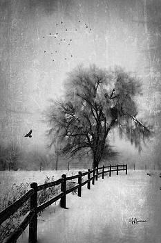 Fence Row by Jeff Swanson