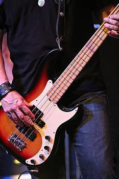 Fender by Elizabeth Hart