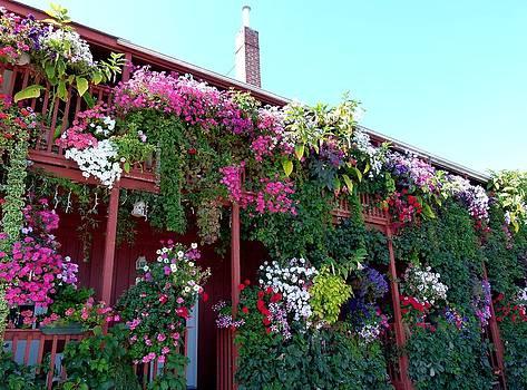 Festooned In Flowers by Will Borden