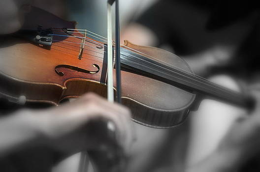 Sandra Sigfusson - Fiddler