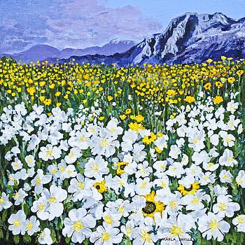 Field of Flowers by Marla Saville