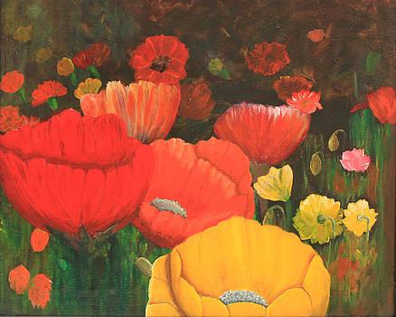 Field of poppys by Robert Thomaston