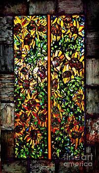 Fields of Sunflowers by Brenda Marik-schmidt