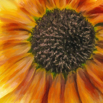 Fiery Fall Flower by Jill Balsam