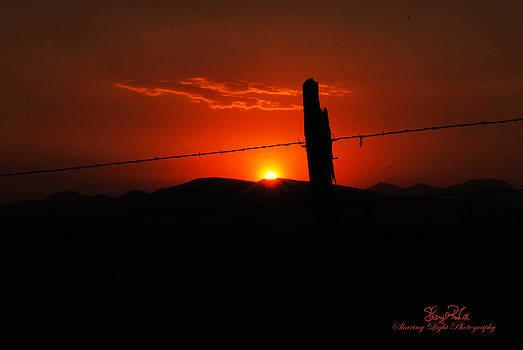Fiery Sunrise by Sheryl Cox