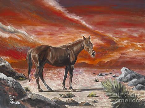 Rich Arons - Fiery Sunset