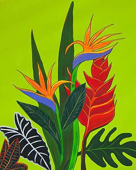 Fiji Fantastic by Bania Thaggard