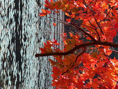 Fire and water by Mandi Howard