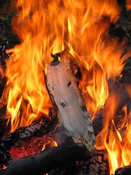 Fire Burning Hot by Alex Vilner