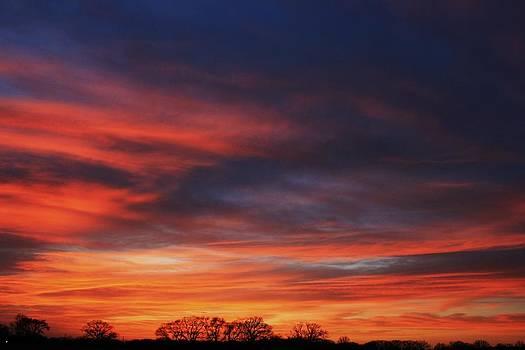 Fire In The Sky II by Lorri Crossno