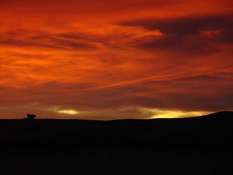 Fire In The Sky by Sandi Owens