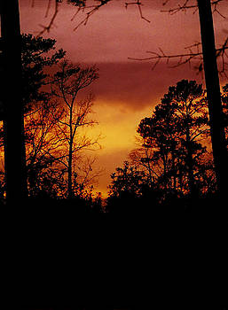 Fire Sky Vertical by David Campbell