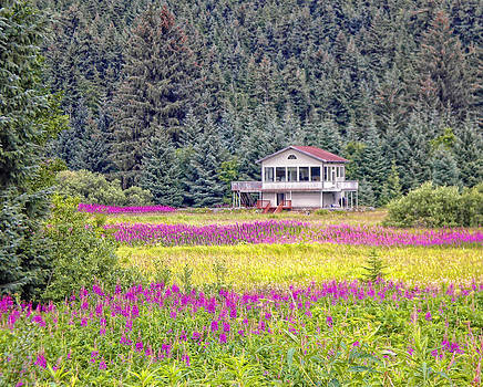 Diana Cox - Fireweed Cottage