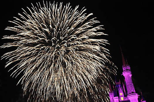 Firework by Shweta Singh