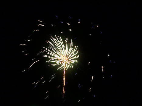 Fireworks 1 by Tanya Moody