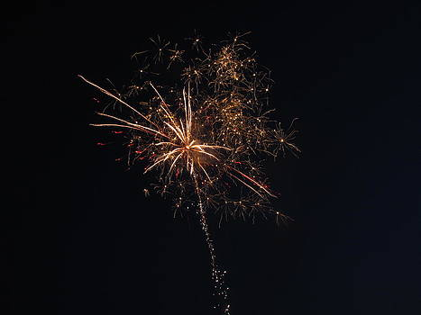 Shane Brumfield - fireworks 2012 3