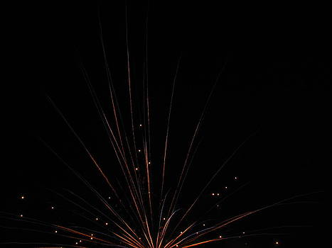 Shane Brumfield - fireworks 2012 5