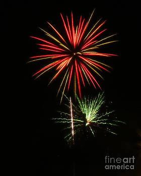 Fireworks by Nora Martinez