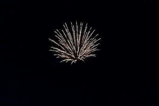 Fireworks3 by Sandi Owens