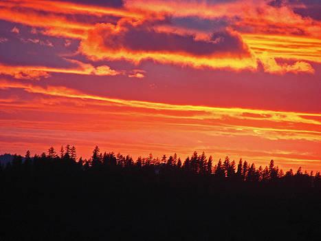 Firey Hills Sunset by Suze Taylor