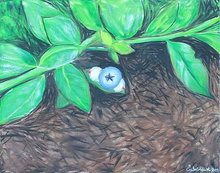 First Fruits by Erin Wildsmith