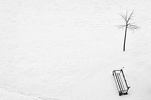 Zoran Buletic - First Snow