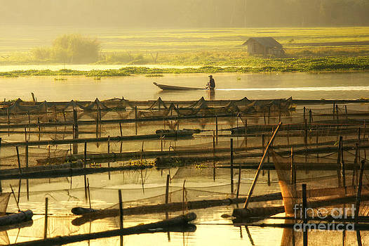 Fish Cages at Sunrise by Jojie Alcantara