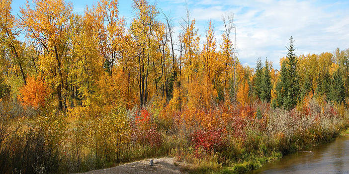 Stuart Turnbull - Fish Creek panorama