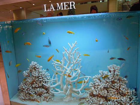 Fish Sell Cosmetics by Lam Lam