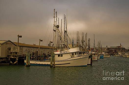 Tim Mulina - Fishing Fleet at Sunset