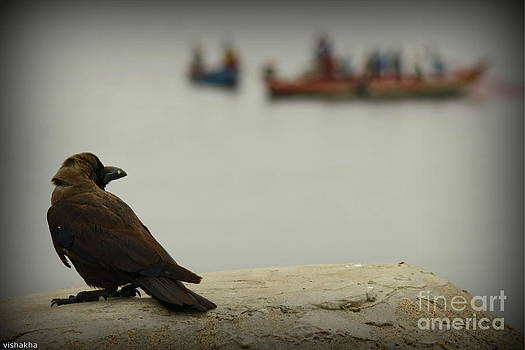 Fishing by Vishakha Bhagat