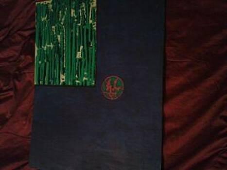 Flag by Shauna Hagedorn