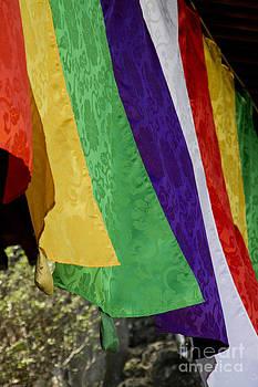 Flag by Tad Kanazaki