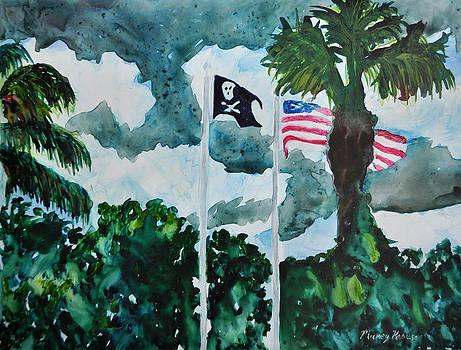 Flags at Lake Tarpon Resort by Mickey Krause
