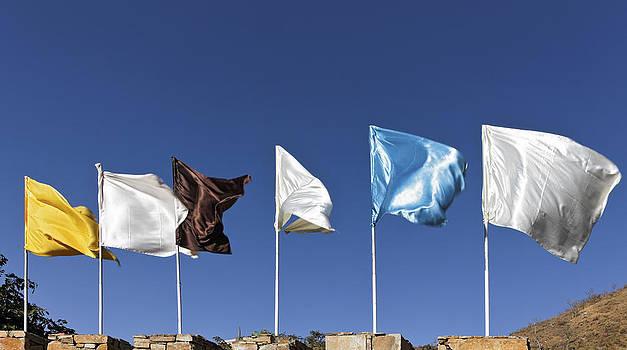 Kantilal Patel - Flags fluttering against blue Sky