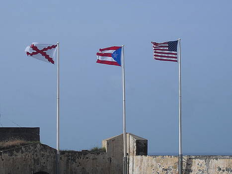 Flags over the Ocean by Melissa Torres
