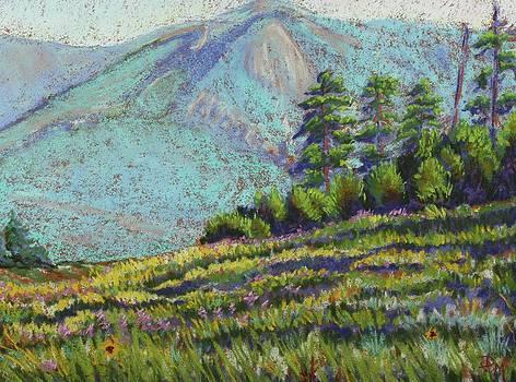 Flagstaff Meadow by Drusilla Montemayor