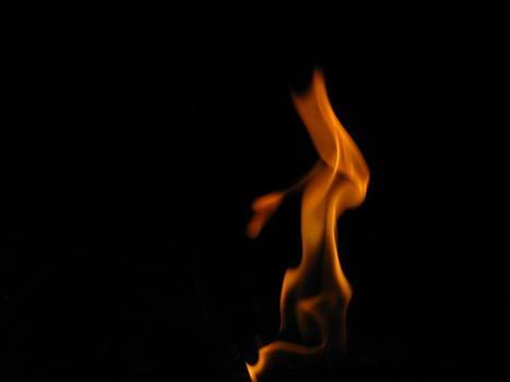 Flame 1 by Shane Brumfield