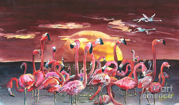 Flamingo Circus by David Ignaszewski