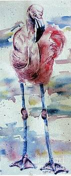 Flamingo Mist by Norma Gafford