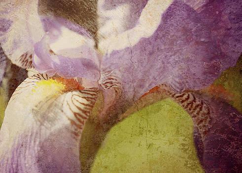 Fleur-de-lis by Amy Neal