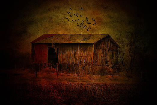 Emily Stauring - Flight Above The Barn