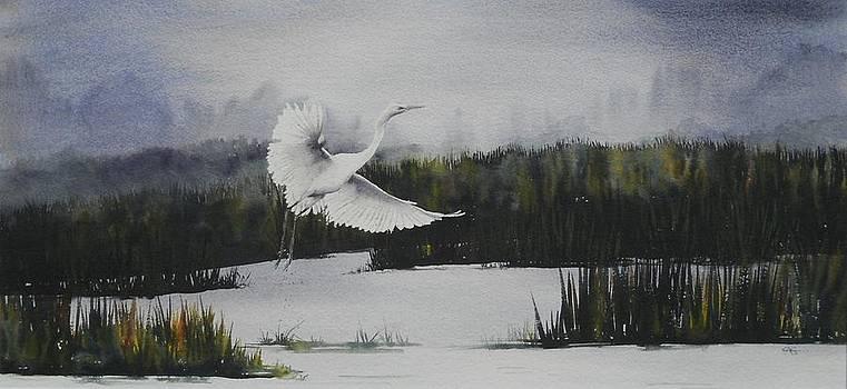 Flight by Carol McLagan