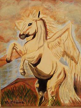 Flight of the Pegasus by Maria Medina