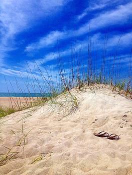 Flip Flops In The Sand by Joan Meyland